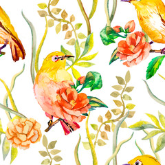 Ingelijste posters Papegaai Watercolor pattern. Tropical birds and flowers. White-eye bird