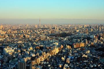 Dense Buildings in Tokyo at dusk