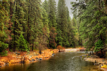 Tuinposter Rivier Merced River Yosemite Valley