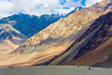 Nubra Valley, Ladakh, Himalayas, India