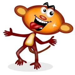 scimmia rock