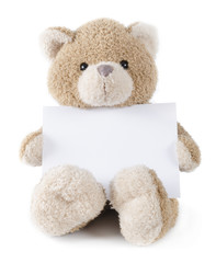 teddybear holding paper or greeting card