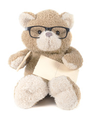 teddybear with glasses holding pen and paper