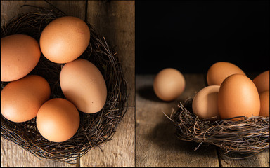 Compilation of fresh eggs images in moody natural lighting setti