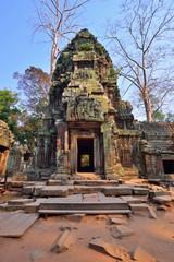 Ta Phrom Temple, Siem Reap Cambodia.