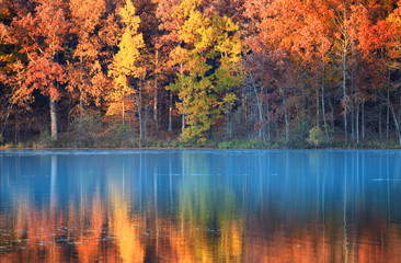 Spoed Foto op Canvas Herfst autumn reflections