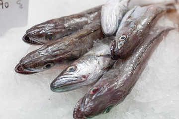 Display of frozen horse mackerels for sale at a market stall, La