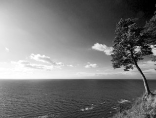 widok na morze