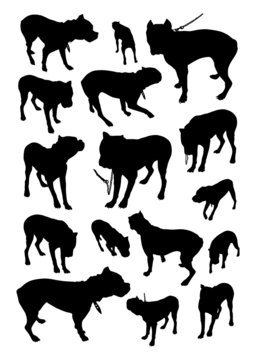 Set of silhouettes of dog breed boxer