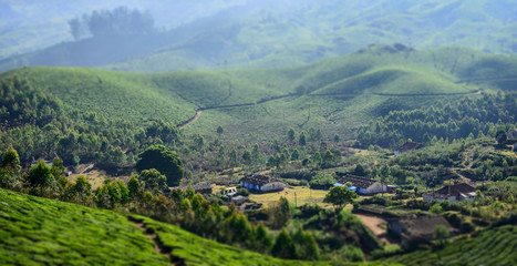 Village on tea plantations in India
