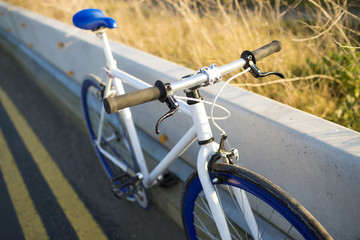 A fixed-gear bicycle