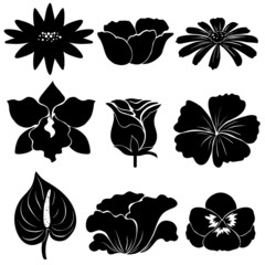 Black flower templates