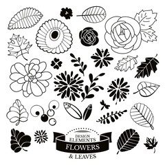 Set of flowers and leaves vector illustration