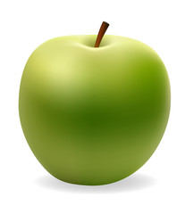 apple green vector illustration