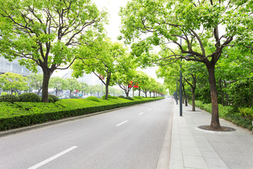 Printed roller blinds Asian Famous Place Trees decorated road in modern city