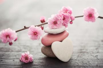 Foto auf Acrylglas Zen fleurs zen