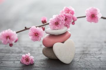 Foto op Aluminium Zen fleurs zen