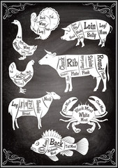 set of diagrams of sections of different animals and seafood