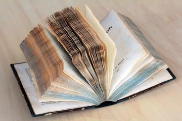 Das alte Buch von 1853
