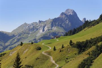 Österreich, Vorarlberg, Blick auf Hochkünzelspitze im Bregenzerwald