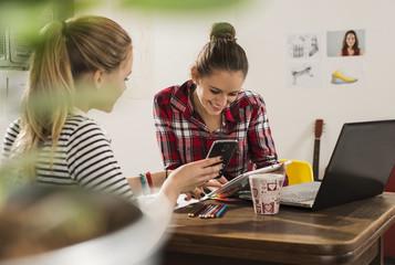 Zwei Freundinnen mit Smartphone, Laptop und Tablet - PC zu Hause