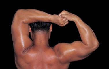 근육질 몸매