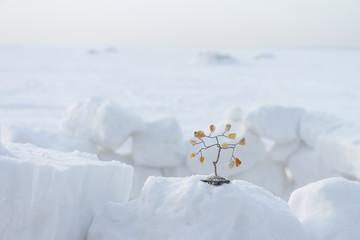 Souvenir a tree on snow