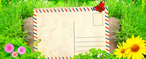 Wall Mural - Summer background with old post card and green grass