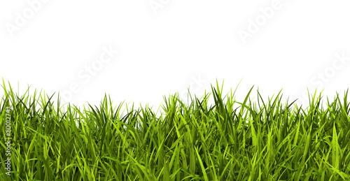 gras rasen wiese ostergras panorama banner hintergrund 3d stockfotos und lizenzfreie. Black Bedroom Furniture Sets. Home Design Ideas