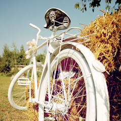 Summer Bicycle