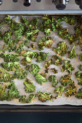 Curly Kale Chips with Cheese and Flax Seeds on the Baking Sheet