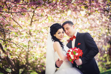 young couple cherry trees