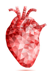 abstract low poly human heart, vector