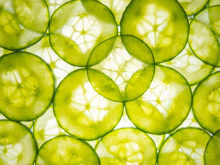 cucumber slices lit from below