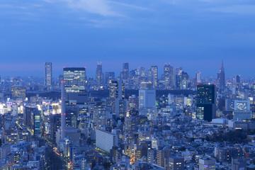東京都市風景 渋谷と新宿高層ビル群を望む トワイライト