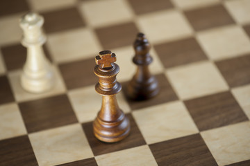 Chess pieces and game board background; focus on king