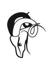 Aries horoscope horned
