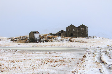 Islanda: fattoria nel campo gelato