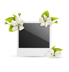 Photo frame with white cherry flowers isolated on white backgrou