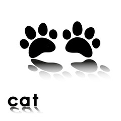 cat's paw prints