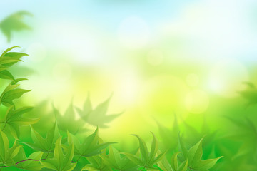 Fresh green maple leaves background, vector illustration