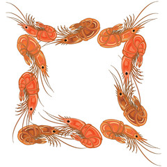 Frame made from prepared shrimps on white background.