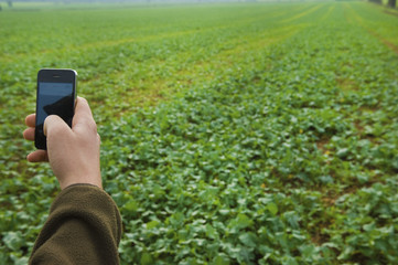 Hand holding a mobile phone, taking a picture of a field.