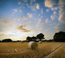 Printed kitchen splashbacks Beige Stunning Summer sunset landscape over feild of hay bales