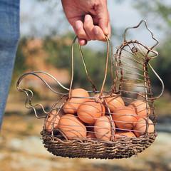 brown eggs in a hen-shaped basket