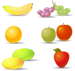 Various fruit vector icons