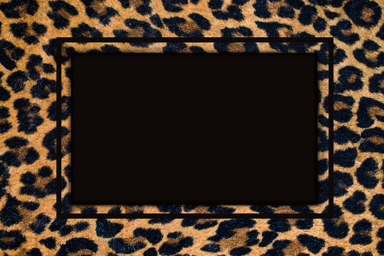 frame with a leopard pattern white black  background