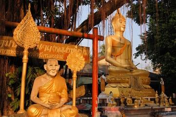 Buddha image and holy man sitting under Bodhi tree