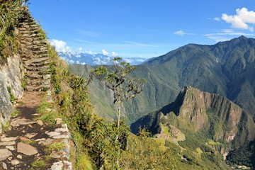 Stairs of trail with Machu Picchu far below in the Andes, Peru