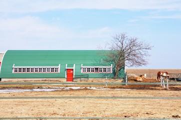 Horses and Long Barn